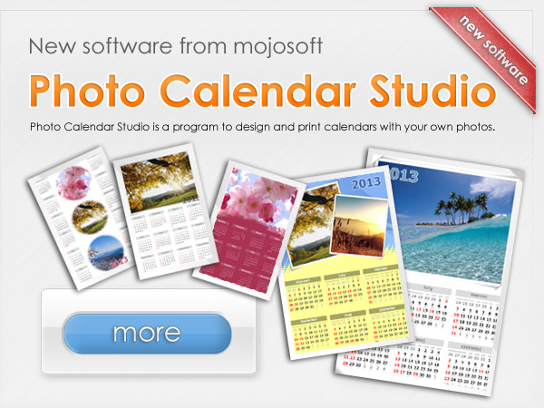 promotion calendar software